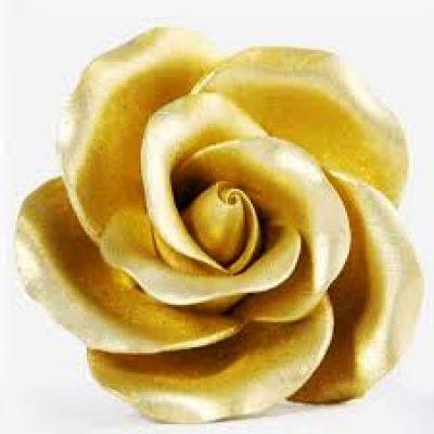 Перламутровый Краситель AmeriColor Gold/Золотой