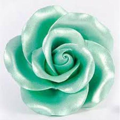 Перламутровый Краситель AmeriColor Green/Зеленый