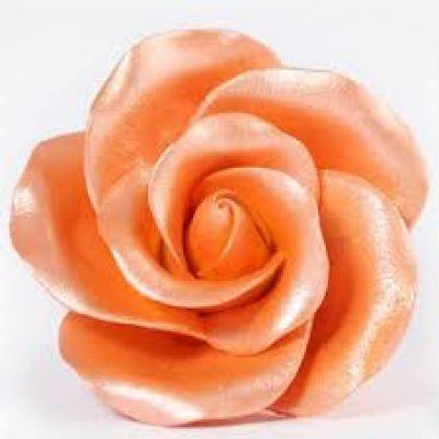 Перламутровый Краситель AmeriColor Orange/Оранжевый