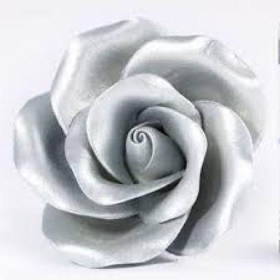 Перламутровый Краситель AmeriColor Silver/Серебро
