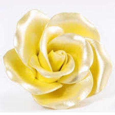 Перламутровый Краситель AmeriColor Yellow/Желтый